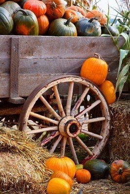wooden wagon with pumpkins