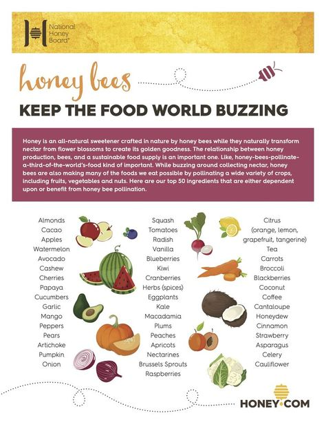 Did you know that honey bees help to pollinate 1/3 our world's food? While buzzing around collecting nectar honey bees are making many of the foods we eat possible including fruits, vegetables and nuts. (ad)