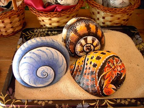 Rockpainting - Sea Shell