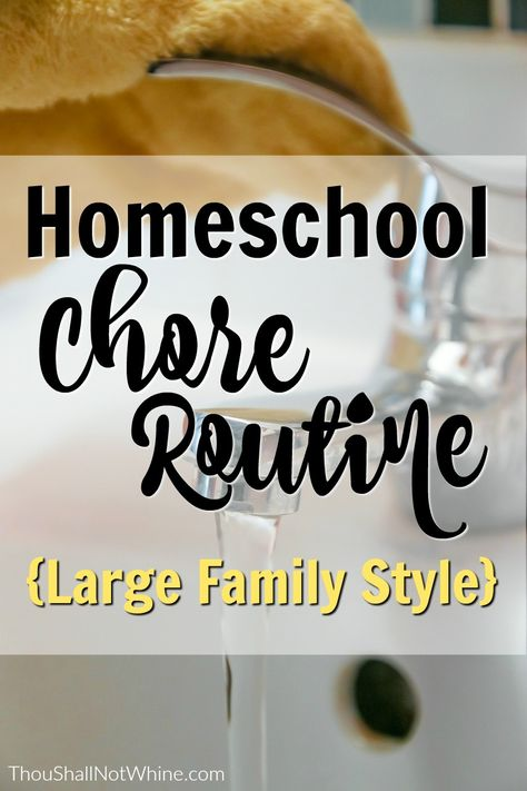 Homeschool Chore Routine - How We Work Together to Keep the House Clean