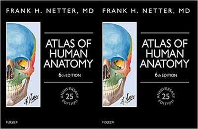 NETTER'S ATLAS OF HUMAN ANATOMY, PDF for FREE Download