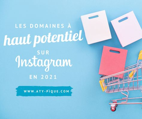 Les domaines à haut potentiel sur Instagram en 2021