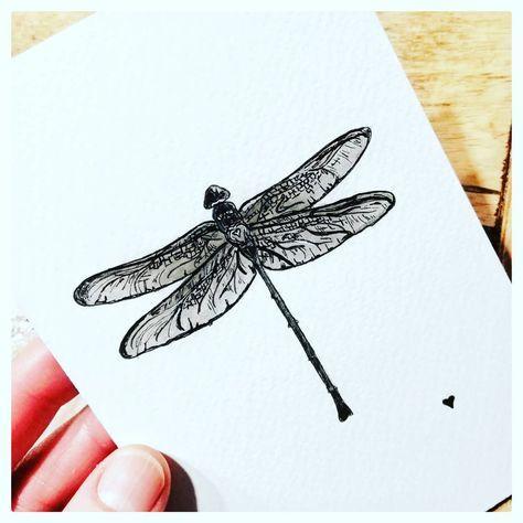 Libelle Schwarzweiss Fineliner Aquarell Aquarellpapier Pinsel