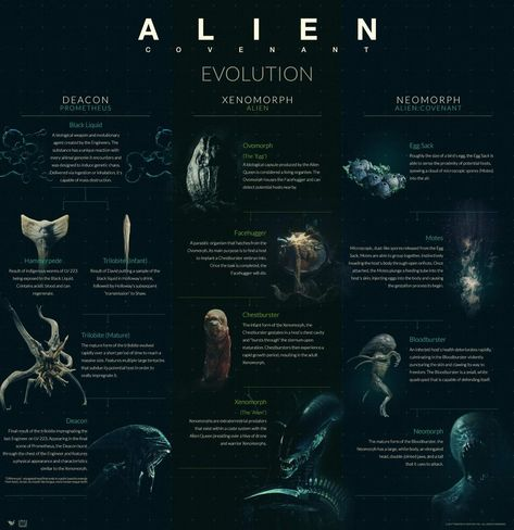 Any Xenomorph fans out there? - sci fi post