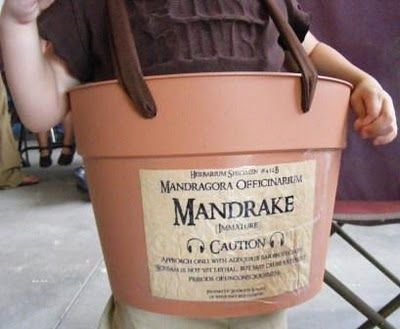 """If you're a Harry Potter fan you'll know what's up with this idea being so darn funny!   """"Harry Potter Mandrake root crying-baby costume"""" I wish I would've thought of this last year!"""