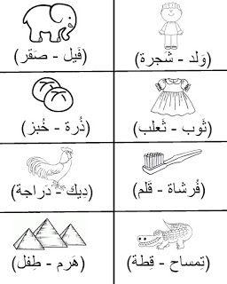 شيت مراجعة عربي لتأسيس كى جى Kg2 مع التدرب على نطق الكلمات بالفيديو Arabic Worksheets Arabic Lessons Arabic Alphabet For Kids
