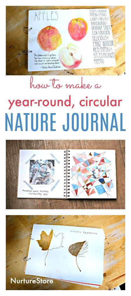 how to make a year round circular nature journal diy, nature journal ideas for children, nature study ideas for kids