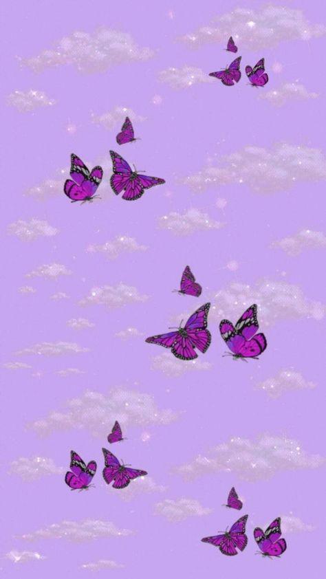 mariposas aesthetic