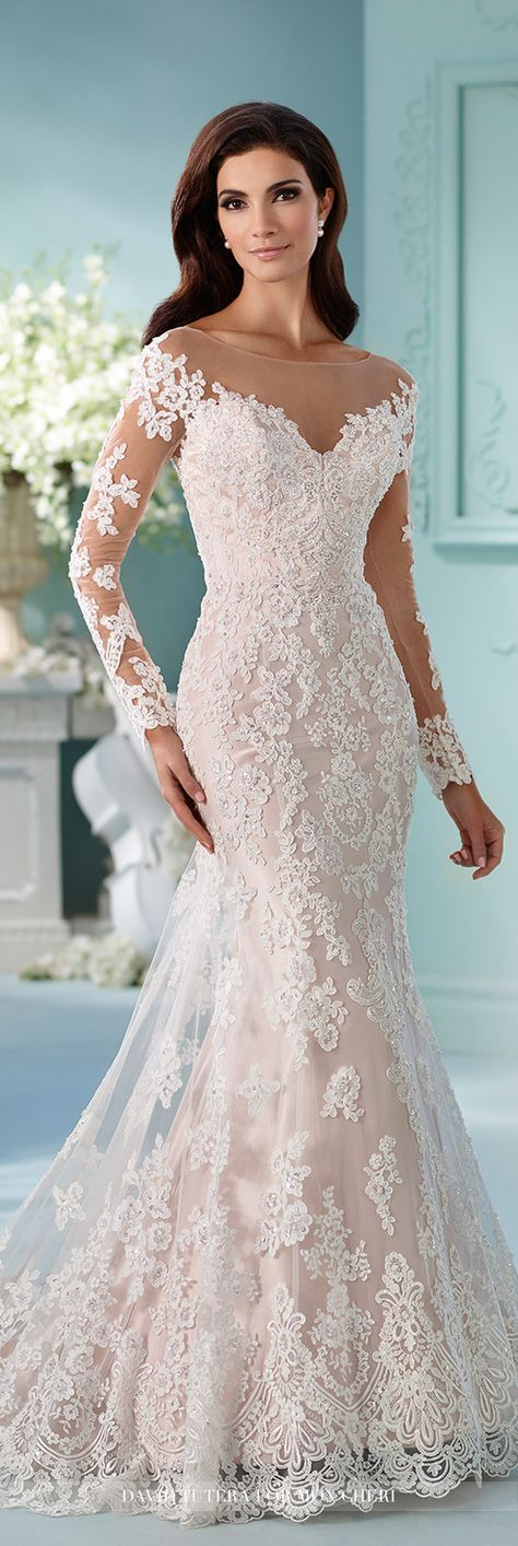 David Tutera for Mon Cheri Fall 2016 Collection - Style No. 216239 Maisie - long sleeve lace wedding dress with illusion sleeves