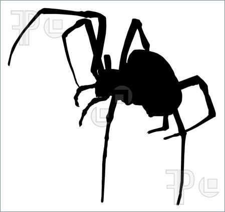 black widow spider silhouette - photo #19