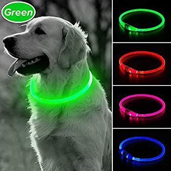 Bseen Led Dog Collar Usb Rechargeable Glowing Pet Collar Tpu Cuttable Dog Safety Lights For Small Medium Large Dogs Cli In 2020 Dog Safety Led Dog Collar Dog Leads