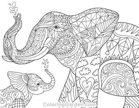 Pin On Elephants