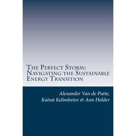 The Perfect Storm (Paperback)