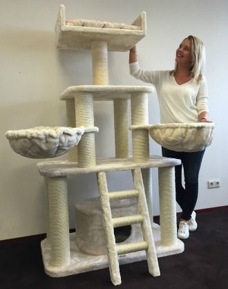The Best Sy Cat Tree For Large Cats, Cat Furniture For Large Cats