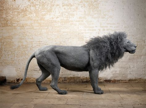 Kendra Haste creates stunning, life-like animal sculptures with layers of galvanized wire.