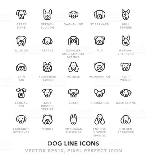 Dog Line Icons royalty-free dog line icons stock vector art & more images of adulation