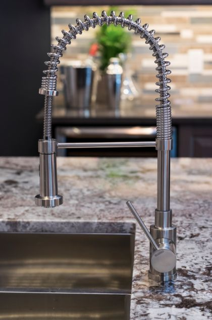 HGTV Canada\'s Leave it to Bryan | Featuring faucet: BLANCO Rita Dual ...