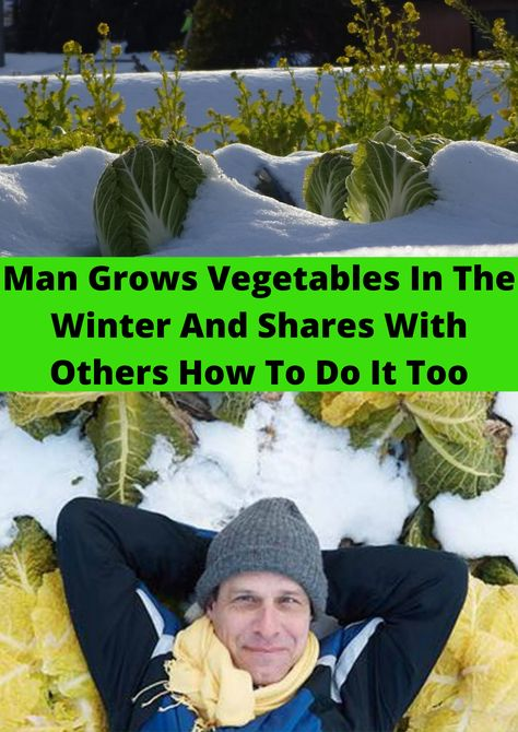 Man Grows Vegetables In The Winter And Shares With Others How To Do It Too