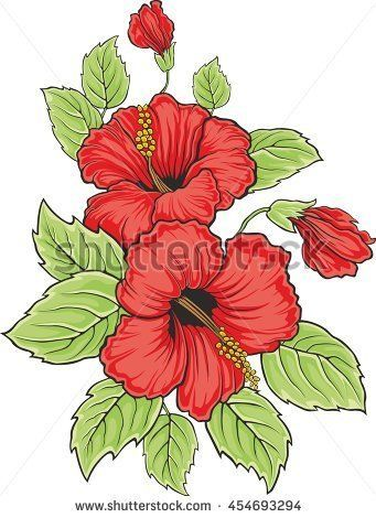 Blooming beautiful hibiscus flower. Hawaii symbol. Card or