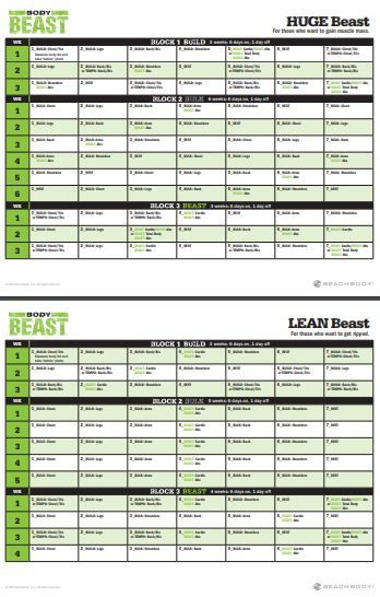 photograph about Body Beast Schedule Printable named Printable Overall body Beast Timetable Beachbody Worksheets and