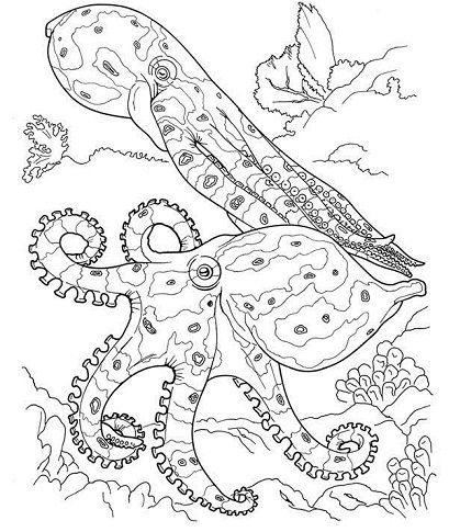 15 Best Printable Animal Colouring Pages For Kids Dover Coloring Pages, Animal  Coloring Pages, Ocean Coloring Pages