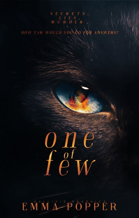 Another dark, gloomy cover filled with blacks, browns and oranges. ugh! But wait a minute - look at that eye. That eye alludes to a creature and the title hints at this creature being unique. I would read the back blurb