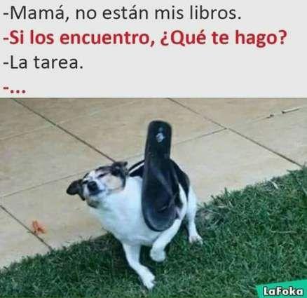Super Memes Mexicanos Escuela Ideas Memes En Espanol Funny Memes Best Memes