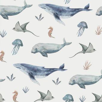 Jersey Family Fabrics Deep Sealife Wale Wal Lottashaus De