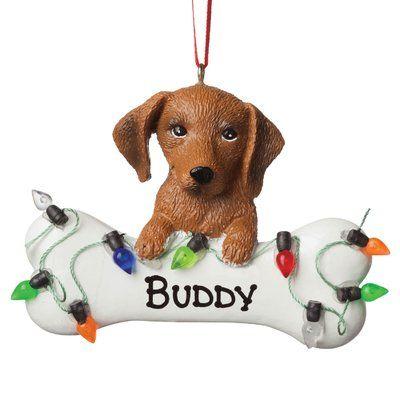 Puppies For Sale Orlando Fl Justpuppies Net Puppies Puppies