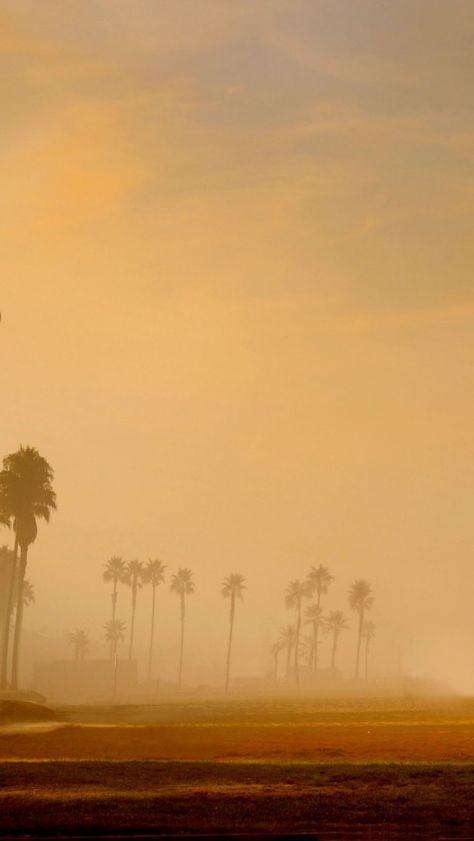 June Gloom A Los Angeles Beach Morning In California Los Angeles Beaches Los Angeles North American Wildlife
