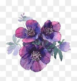 Enjoy Hd High Quality Purple Flowers Png Image Transparent Purple Flowers White Background Hd Pn Purple Flower Background Purple Flowers Blue Lotus Flower