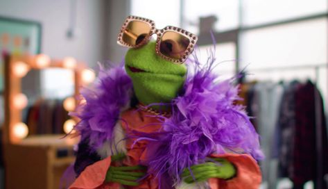 Kermit Elton John style before and after Memes Humor, Funny Memes, Sapo Kermit, Sapo Meme, Frog Wallpaper, Frog Meme, Frog Pictures, Miss Piggy, Kermit The Frog