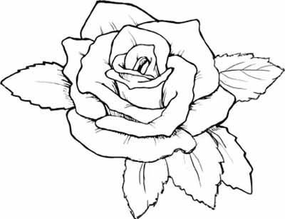 Rose Coloring Books Rose Coloring Pages Flower Coloring Pages Pyrography Patterns