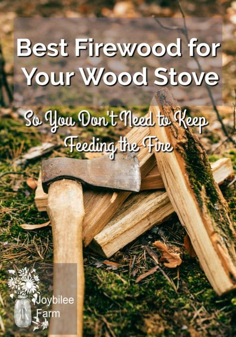 Best Firewood For Your Wood Stove So You Don T Need To Keep Feeding The Fire