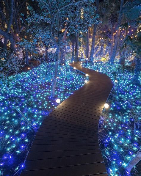The shining path ~ Kanagawa, Japan Photo: Congrats! 😍 ➡Founders: ⬅ Tag your favourite person! Vacation Trips, Dream Vacations, Vacation Travel, Japan Photo, Japan Picture, Beautiful Places To Travel, Wonderful Places, Romantic Places, Amazing Places
