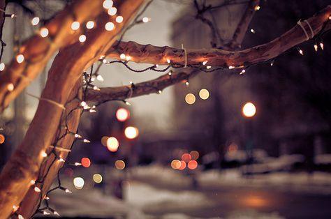 Christmas time   Winter Wonderland   Pinterest   Christmas time ...