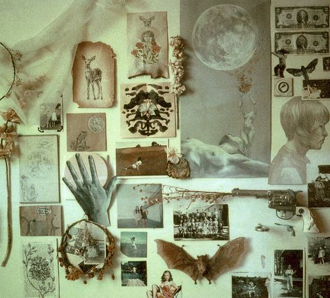 somewhere between collage + cabinet of curiosities - original drawing by Maggie Lochtenberg Witch Room, Cabinet Of Curiosities, Aesthetic Rooms, Witch Aesthetic, Natural History, My Room, Etsy Vintage, Bedroom Decor, Bedroom Wall