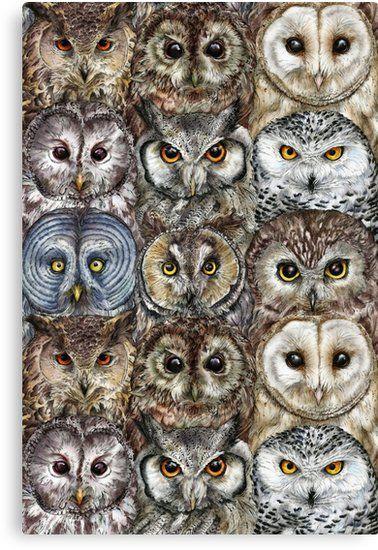 Owl Optics Art Print by farynhughes