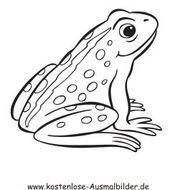Grossartig Absolut Kostenlos Meerestiere Malvorlagen Strategien Absolut Grossartig Ko Animal Coloring Books Art Coloring Pages