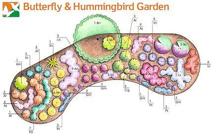 garden templates for different conditions using native plants shady sunny dry moist butterfly etc gardening pinterest butterfly plants and