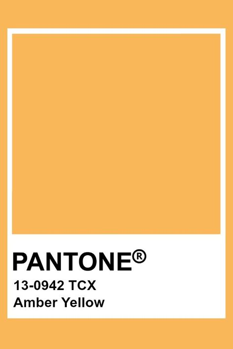 Pantone Amber Yellow