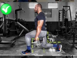 How To Lunges Main Leg Exercises Guide Leg Workout Workout Guide Lunge Workout