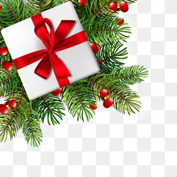 Christmas Illustration With Realistic Fir Branches Vector Illustration Christmas Gift Xmas Holiday Png And Vector With Transparent Background For Free Downlo Christmas Illustration Christmas Vectors Free Christmas