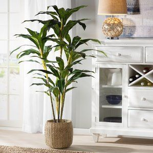 Mind Blowing Cool Ideas Artificial Grass Design Artificial Plants Indoor Tall Artificial Artificial Plants Indoor Artificial Plants Outdoor Artificial Plants