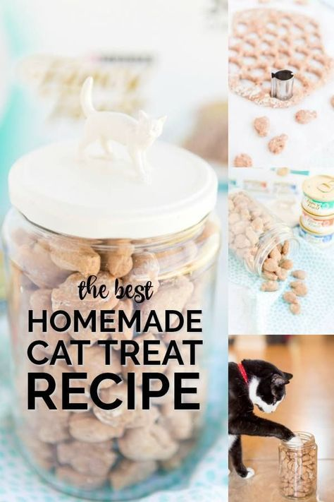These Easy Homemade Cat Treats Are A Darling Way To Say I Love