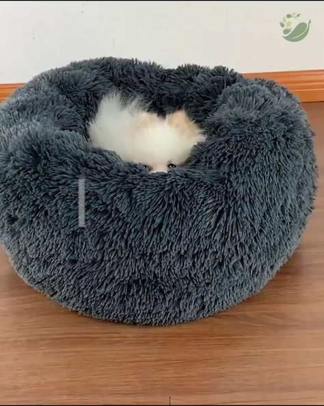 😻 Superior Soft  Pet-Safe Materials
