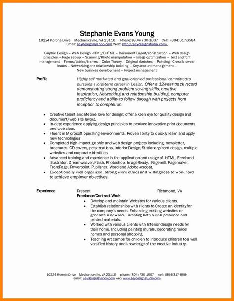 Software Development Contracts Template Luxury 9 Professional