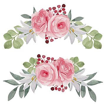 pink rose flower arrangement collection watercolor style, roses clipart,  wedding, rose png and vector with transparent background for free download  | rose flower arrangements, flower illustration, pink flowers background  pinterest