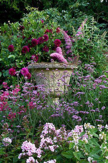 Wild Garden Wildflowers Summer Landscaping Dream Garden Cottage Garden Plants
