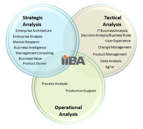 Major Roles And Responsibilities Of The Business Analyst  Project